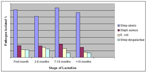 stage-of-lactation
